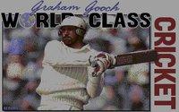 Cкриншот Graham Gooch World Class Cricket, изображение № 748563 - RAWG
