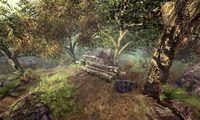 Cкриншот Готика 4: Аркания, изображение № 470463 - RAWG