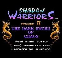 Cкриншот Ninja Gaiden II: The Dark Sword of Chaos (1990), изображение № 737127 - RAWG
