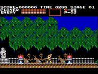 Castlevania screenshot, image №248791 - RAWG