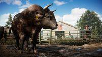 Far Cry 5 screenshot, image №239843 - RAWG