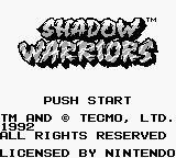 Cкриншот Ninja Gaiden Shadow, изображение № 751710 - RAWG