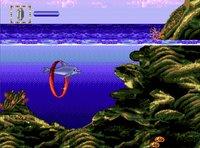 Cкриншот SEGA Mega Drive Classic Collection Volume 2, изображение № 571813 - RAWG