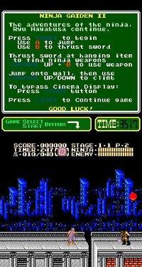 Cкриншот Ninja Gaiden II: The Dark Sword of Chaos (1990), изображение № 737121 - RAWG