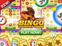 Cкриншот Bingo Country Vibes, изображение № 1857897 - RAWG
