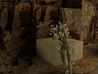 Tomb Raider screenshot, image №320414 - RAWG