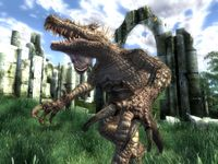 Cкриншот The Elder Scrolls IV: Oblivion, изображение № 699228 - RAWG
