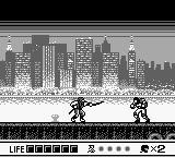 Cкриншот Ninja Gaiden Shadow, изображение № 751712 - RAWG