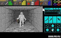 Dungeon Master screenshot, image №289204 - RAWG