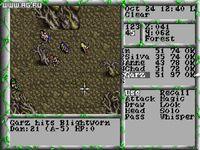 Cкриншот The Magic Candle 3, изображение № 330530 - RAWG