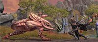 Cкриншот The Elder Scrolls Online, изображение № 593858 - RAWG