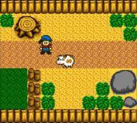 Cкриншот Harvest Moon, изображение № 806520 - RAWG