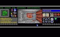 Bloodwych (1989) screenshot, image №743946 - RAWG