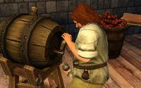 Cкриншот The Sims Medieval, изображение № 560650 - RAWG