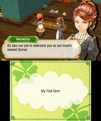 Cкриншот Story of Seasons, изображение № 264441 - RAWG