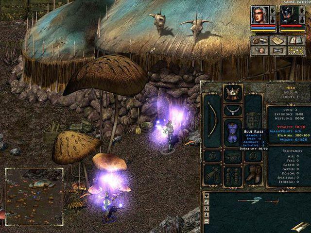 Beyond Divinity screenshot