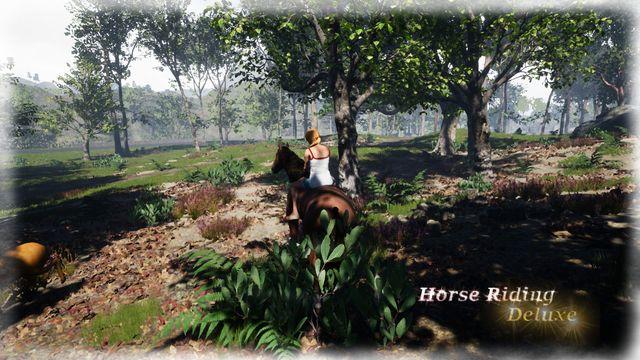 Horse Riding Deluxe screenshot