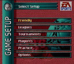 FIFA Soccer 96 screenshot