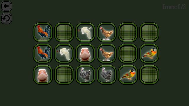 Animals Memory: Birds screenshot
