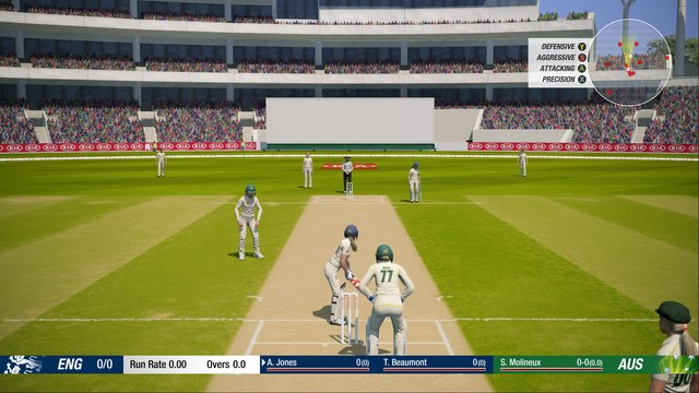 Cricket 19 screenshot