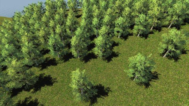 Trials of Wilderness screenshot