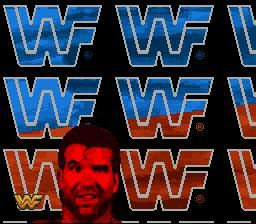 WWF Raw screenshot