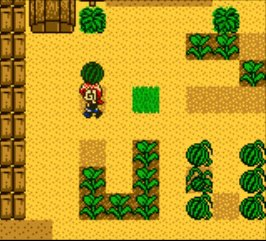 Harvest Moon 2 GBC (1999) screenshot