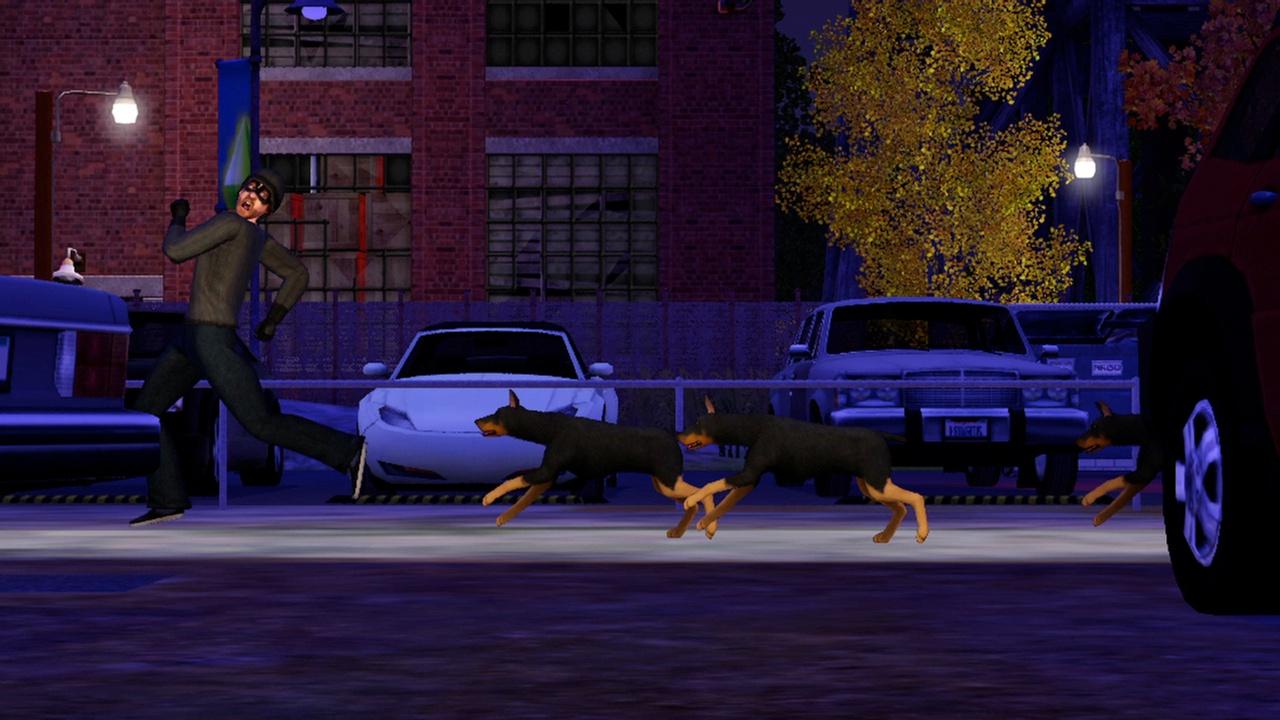 Прохождение Sims 3: Питомцы, The